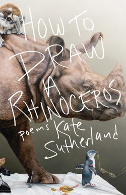 Reviews-December_HowtoDrawaRhinoceros_Cover